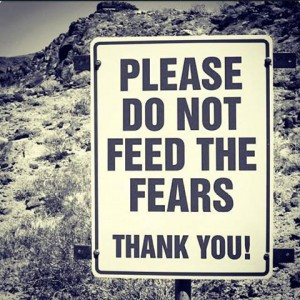 please-do-not-feed-fear